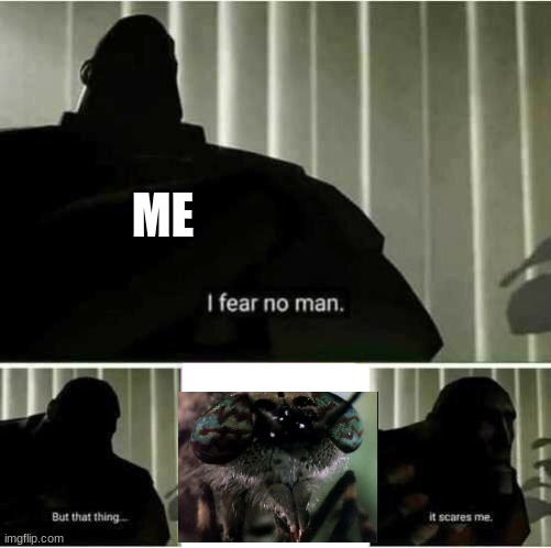 I was scared watching this |  ME | image tagged in i fear no man,spongebob,wormy | made w/ Imgflip meme maker