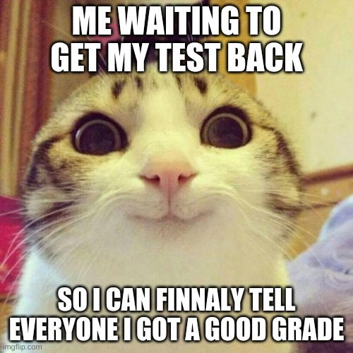 Smiling Cat |  ME WAITING TO GET MY TEST BACK; SO I CAN FINNALY TELL EVERYONE I GOT A GOOD GRADE | image tagged in memes,smiling cat | made w/ Imgflip meme maker