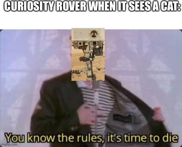 Curiosity killed the cat |  CURIOSITY ROVER WHEN IT SEES A CAT: | image tagged in you know the rules it's time to die,memes,funny,mars,rover,stop reading the tags | made w/ Imgflip meme maker