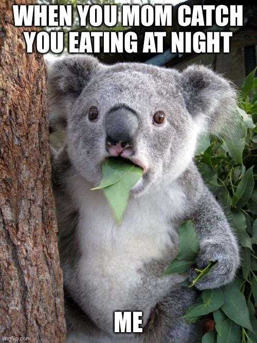 Uhhhb hi mom? |  WHEN YOU MOM CATCH YOU EATING AT NIGHT; ME | image tagged in memes,surprised koala | made w/ Imgflip meme maker