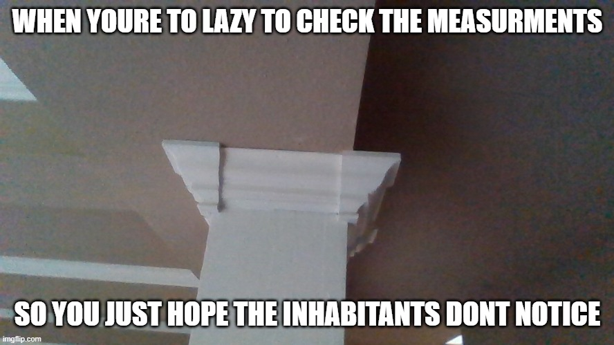 a pillar in my house |  WHEN YOURE TO LAZY TO CHECK THE MEASURMENTS; SO YOU JUST HOPE THE INHABITANTS DONT NOTICE | image tagged in genius,fail | made w/ Imgflip meme maker