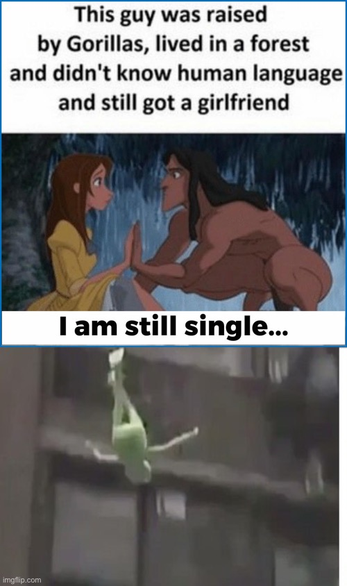 WILL I ALWAYS BE LONELY?!?! | image tagged in kermit,disney,kermit window | made w/ Imgflip meme maker