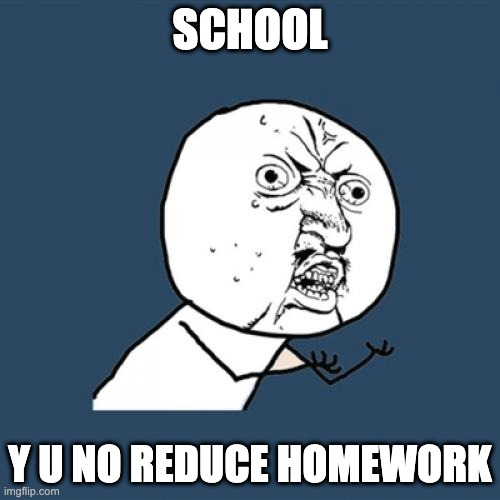 E |  SCHOOL; Y U NO REDUCE HOMEWORK | image tagged in memes,y u no | made w/ Imgflip meme maker