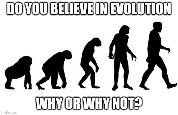Human Evolution |  DO YOU BELIEVE IN EVOLUTION; WHY OR WHY NOT? | image tagged in human evolution | made w/ Imgflip meme maker