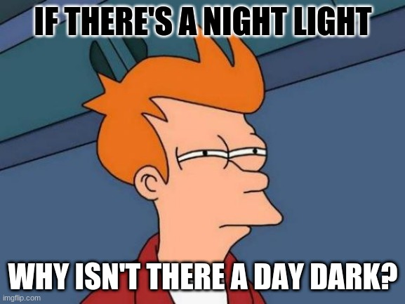 huh |  IF THERE'S A NIGHT LIGHT; WHY ISN'T THERE A DAY DARK? | image tagged in memes,futurama fry | made w/ Imgflip meme maker