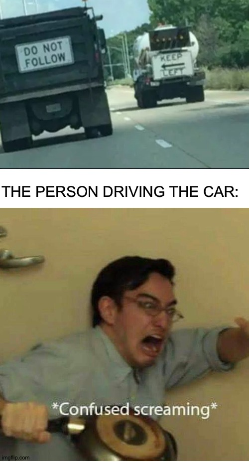 What to do, what to do |  THE PERSON DRIVING THE CAR: | image tagged in confused screaming | made w/ Imgflip meme maker
