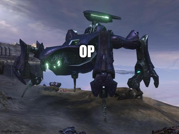 Scarab | OP | image tagged in scarab | made w/ Imgflip meme maker