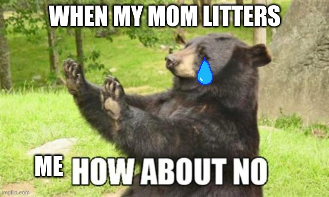 How About No Bear |  WHEN MY MOM LITTERS; ME | image tagged in memes,how about no bear | made w/ Imgflip meme maker