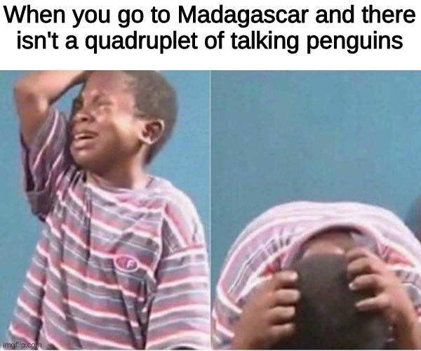 pain |  When you go to Madagascar and there isn't a quadruplet of talking penguins | image tagged in crying kid | made w/ Imgflip meme maker