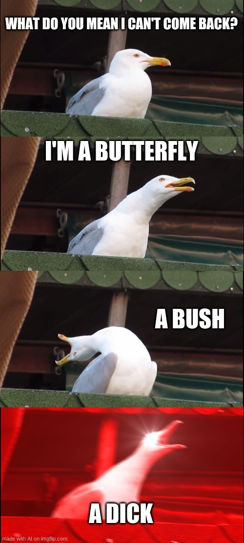 made with Ai |  WHAT DO YOU MEAN I CAN'T COME BACK? I'M A BUTTERFLY; A BUSH; A DICK | image tagged in memes,inhaling seagull | made w/ Imgflip meme maker