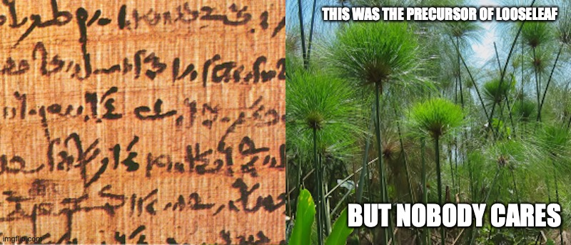 Papyrus |  THIS WAS THE PRECURSOR OF LOOSELEAF; BUT NOBODY CARES | image tagged in paper,papyrus,memes | made w/ Imgflip meme maker
