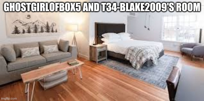 Hotel Room |  GHOSTGIRLOFBOX5 AND T34-BLAKE2OO9'S ROOM | made w/ Imgflip meme maker