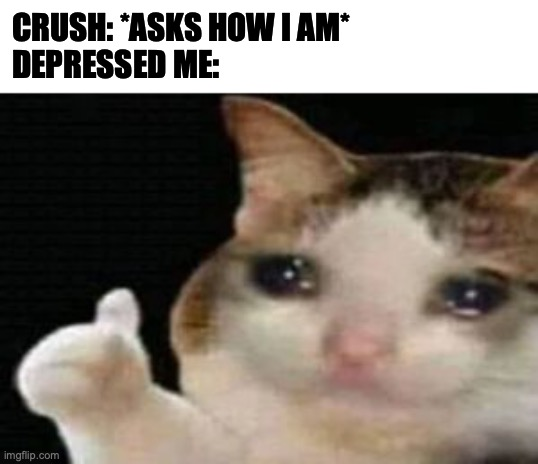 Crush asking me how I am |  CRUSH: *ASKS HOW I AM* DEPRESSED ME: | image tagged in crying cat thumbs up,crush,sad,rejection,cat,depressed | made w/ Imgflip meme maker