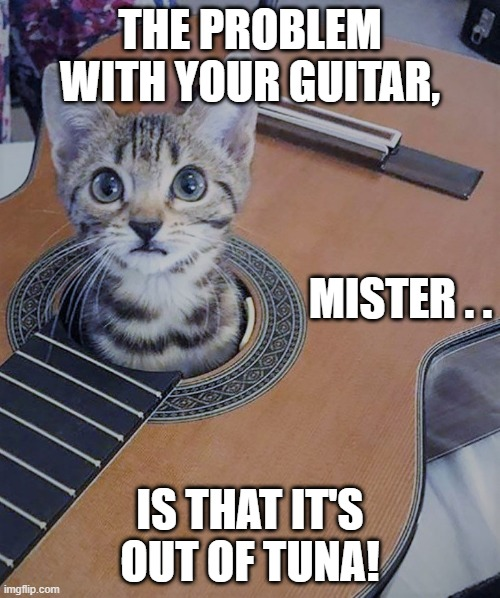 Guitar Out of Tuna |  THE PROBLEM WITH YOUR GUITAR, MISTER . . IS THAT IT'S OUT OF TUNA! | image tagged in guitars,cats,funny memes | made w/ Imgflip meme maker