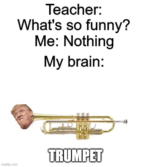 blank white template |  Teacher: What's so funny? Me: Nothing; My brain:; TRUMPET | image tagged in blank white template | made w/ Imgflip meme maker