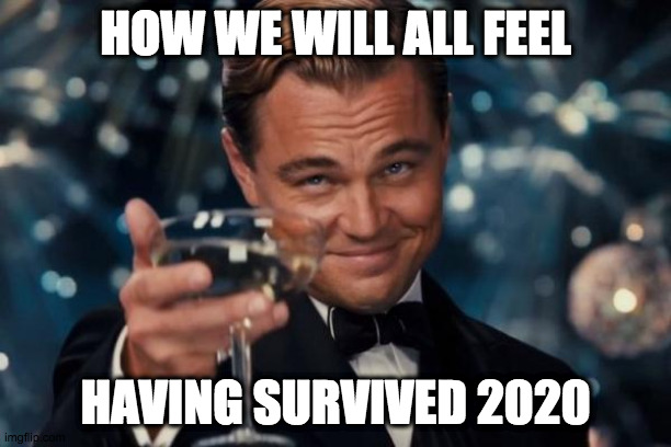 to my fellow survivors |  HOW WE WILL ALL FEEL; HAVING SURVIVED 2020 | image tagged in fun | made w/ Imgflip meme maker