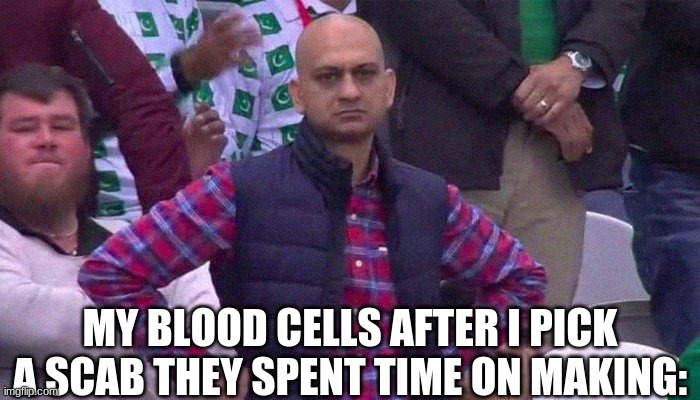 Angry Pakistani Fan |  MY BLOOD CELLS AFTER I PICK A SCAB THEY SPENT TIME ON MAKING: | image tagged in angry pakistani fan | made w/ Imgflip meme maker