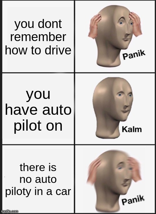 Panik Kalm Panik Meme |  you dont remember how to drive; you have auto pilot on; there is no auto piloty in a car | image tagged in memes,panik kalm panik | made w/ Imgflip meme maker