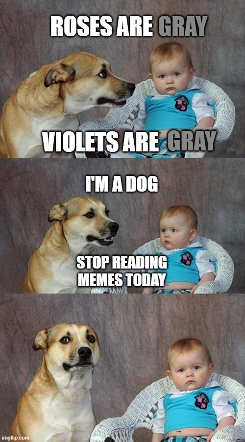 Dad Joke Dog |  GRAY; ROSES ARE; VIOLETS ARE; GRAY; I'M A DOG; STOP READING MEMES TODAY | image tagged in memes,dad joke dog | made w/ Imgflip meme maker