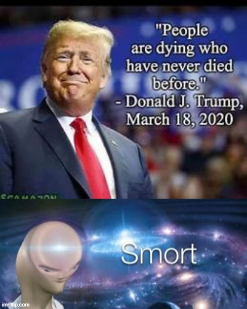 He really said that! Wow... | image tagged in donald trump,trump,funny,meme,meme man,meme man smort | made w/ Imgflip meme maker