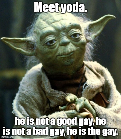 Meet yoda. |  Meet yoda. he is not a good gay, he is not a bad gay, he is the gay. | image tagged in memes,star wars yoda | made w/ Imgflip meme maker