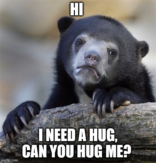 plz |  HI; I NEED A HUG, CAN YOU HUG ME? | image tagged in memes,confession bear | made w/ Imgflip meme maker
