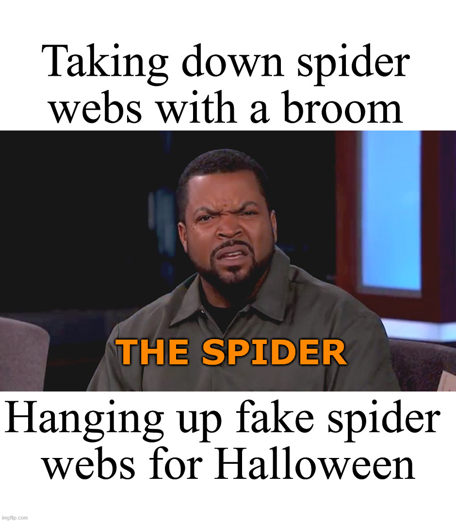 It is confusing to me too. |  Taking down spider webs with a broom; THE SPIDER; Hanging up fake spider  webs for Halloween | image tagged in really ice cube,confused,halloween | made w/ Imgflip meme maker