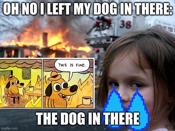 Disaster Girl Meme |  OH NO I LEFT MY DOG IN THERE:; THE DOG IN THERE | image tagged in memes,disaster girl | made w/ Imgflip meme maker
