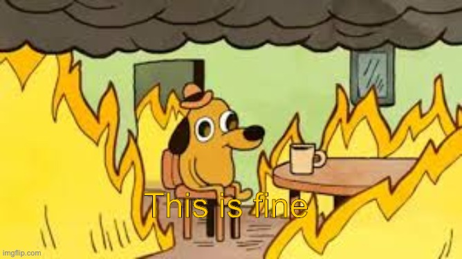 This is fine | image tagged in evrything is fine | made w/ Imgflip meme maker