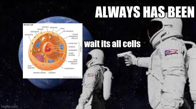 7th-grade Biology be like - Imgflip