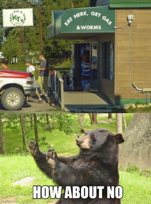 image tagged in memes,how about no bear | made w/ Imgflip meme maker