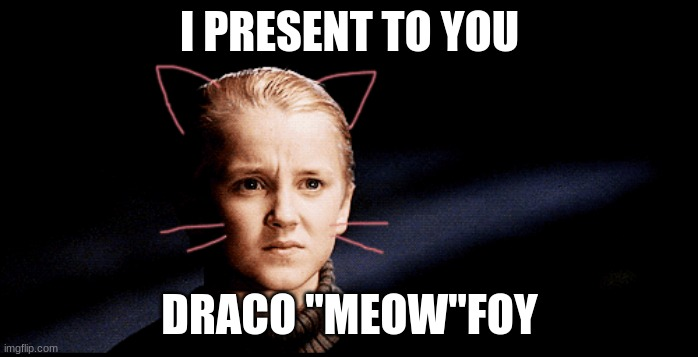 "Meow-foy |  I PRESENT TO YOU; DRACO ""MEOW""FOY 