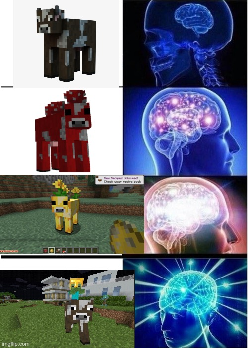 Moozie is awesome | image tagged in memes,expanding brain,minecraft,cow | made w/ Imgflip meme maker