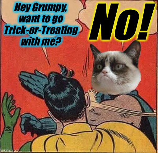 Once again, Robin goes it alone.... |  No! Hey Grumpy, want to go Trick-or-Treating with me? | image tagged in memes,funny,grumpy cat,evilmandoevil | made w/ Imgflip meme maker