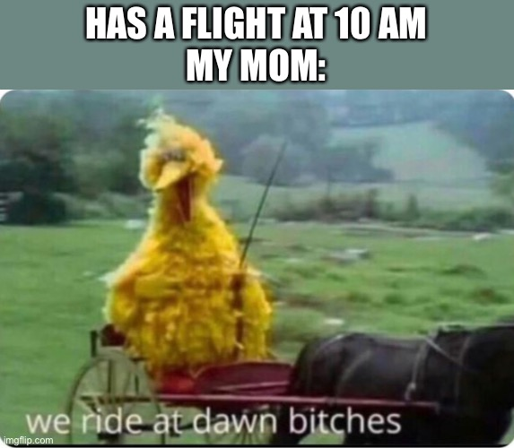 Seriously every time |  HAS A FLIGHT AT 10 AM MY MOM: | image tagged in big bird | made w/ Imgflip meme maker