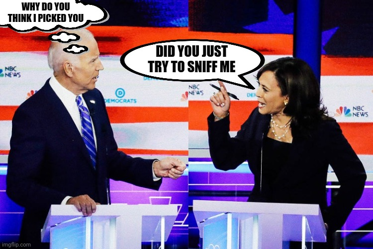 Maybe she smelled the best |  WHY DO YOU THINK I PICKED YOU; DID YOU JUST TRY TO SNIFF ME | image tagged in kamala harris attacks joe biden | made w/ Imgflip meme maker