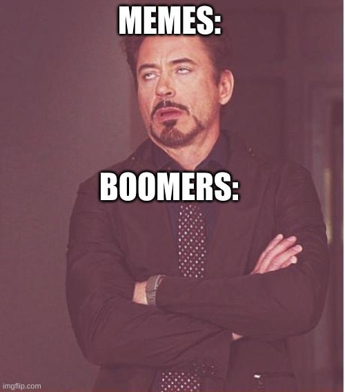 idek |  MEMES:; BOOMERS: | image tagged in memes,face you make robert downey jr | made w/ Imgflip meme maker