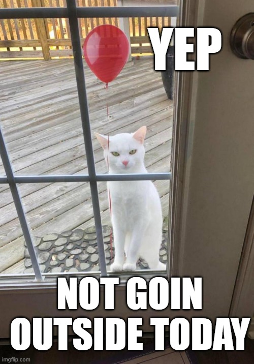 YEP; NOT GOIN OUTSIDE TODAY | image tagged in it clown,cat | made w/ Imgflip meme maker
