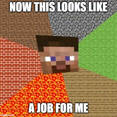 NOW THIS LOOKS LIKE A JOB FOR ME | image tagged in minecraft steve | made w/ Imgflip meme maker
