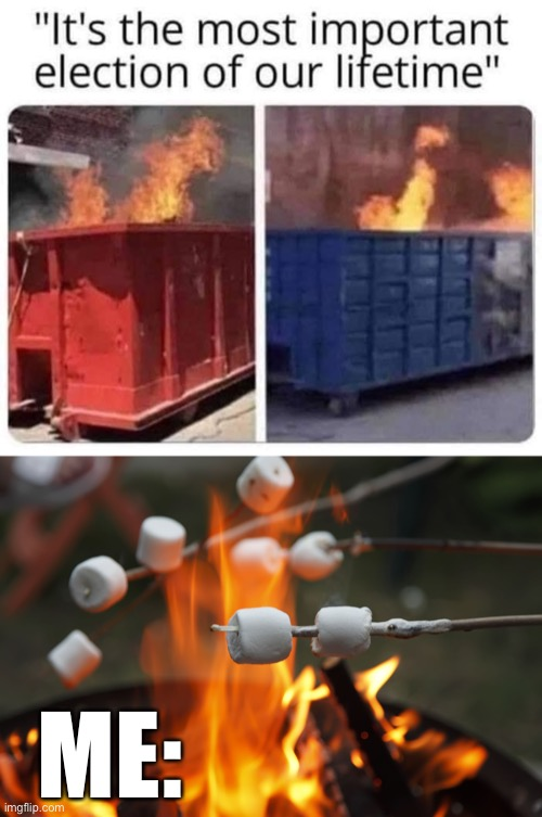 Most important election ever you say?  I brought my marshmallows |  ME: | image tagged in roasting marshmellows,politics lol,election 2020,scumbag republicans,dirtbag democrats,dumpster fire | made w/ Imgflip meme maker