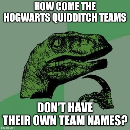 Like the Gryffindor Lions, the Hufflepuff Badgers, the Ravenclaw Ravens, and the Slytherin Snakes. |  HOW COME THE HOGWARTS QUIDDITCH TEAMS; DON'T HAVE THEIR OWN TEAM NAMES? | image tagged in memes,philosoraptor,harry potter,hogwarts,quidditch,something to think about | made w/ Imgflip meme maker