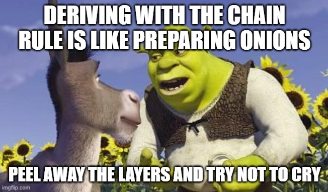 SHREK & ONIONS |  DERIVING WITH THE CHAIN RULE IS LIKE PREPARING ONIONS; PEEL AWAY THE LAYERS AND TRY NOT TO CRY | image tagged in shrek onions | made w/ Imgflip meme maker