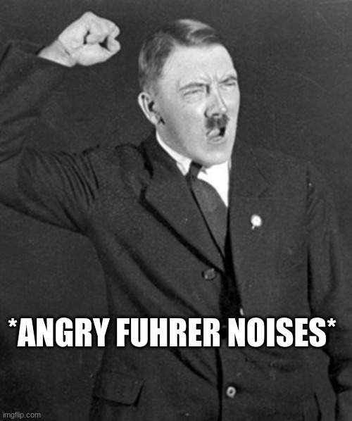 Angry Hitler | *ANGRY FUHRER NOISES* | image tagged in angry hitler | made w/ Imgflip meme maker