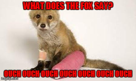 What Does The Injured Fox Say??? | WHAT DOES THE FOX SAY? OUCH OUCH OUCH OUCH OUCH OUCH OUCH | image tagged in what does the fox say,funny,ouch,fox,animals | made w/ Imgflip meme maker