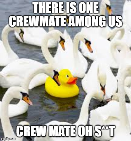 THERE IS ONE CREWMATE AMONG US; CREW MATE OH S**T | image tagged in one impostor among us | made w/ Imgflip meme maker