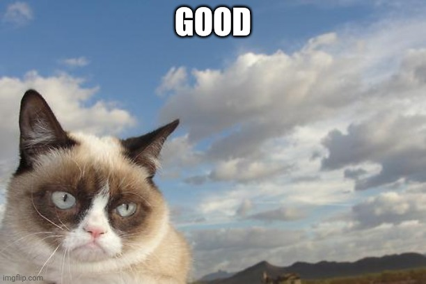 Grumpy Cat Sky Meme | GOOD | image tagged in memes,grumpy cat sky,grumpy cat | made w/ Imgflip meme maker