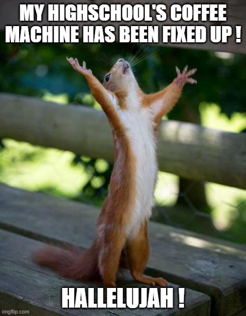 Geez, this is the best feeling in this world... |  MY HIGHSCHOOL'S COFFEE MACHINE HAS BEEN FIXED UP ! HALLELUJAH ! | image tagged in happy squirrel,memes,funny,coffee machine,highschool | made w/ Imgflip meme maker