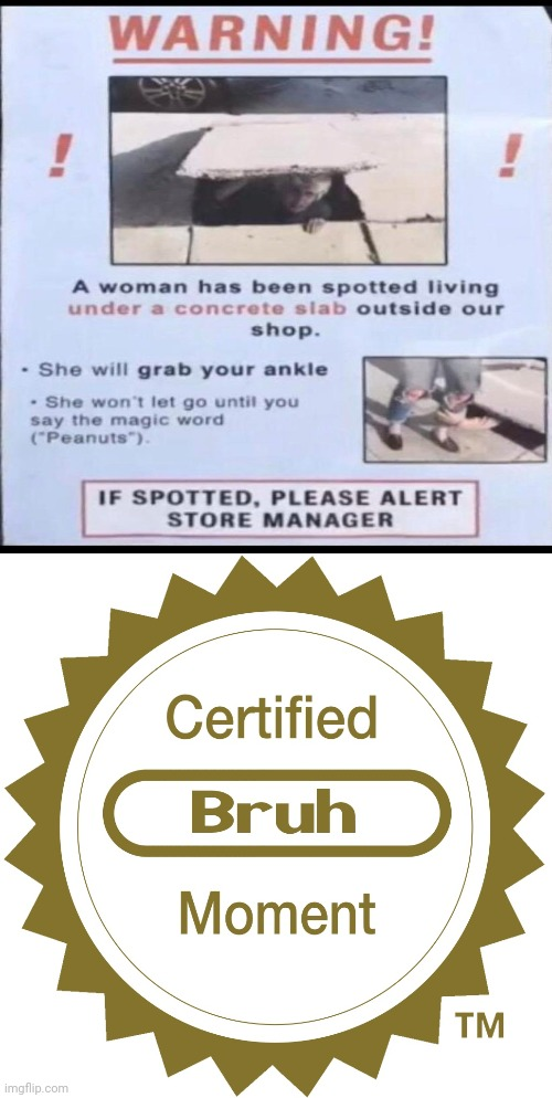 Certified bruh moment: A woman has been spotted living under a concrete slab outside our shop. | image tagged in certified bruh moment,funny,memes,woman,concrete,meme | made w/ Imgflip meme maker