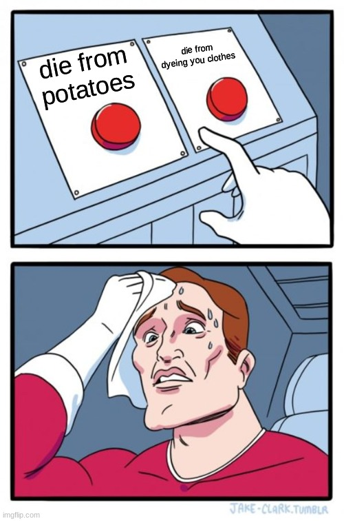 Two Buttons Meme | die from potatoes die from dyeing you clothes | image tagged in memes,two buttons | made w/ Imgflip meme maker