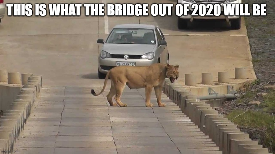 THIS IS WHAT THE BRIDGE OUT OF 2020 WILL BE | image tagged in hell bridge | made w/ Imgflip meme maker